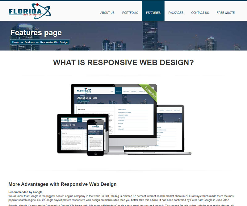 florida web enterprise responsive info